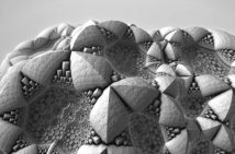 Surface Detail