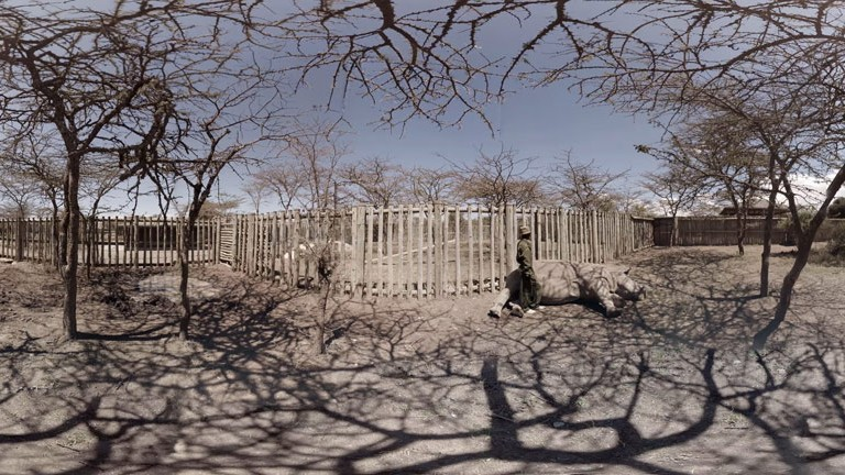 The-Ark_Sudan-in-the-boma_panorama