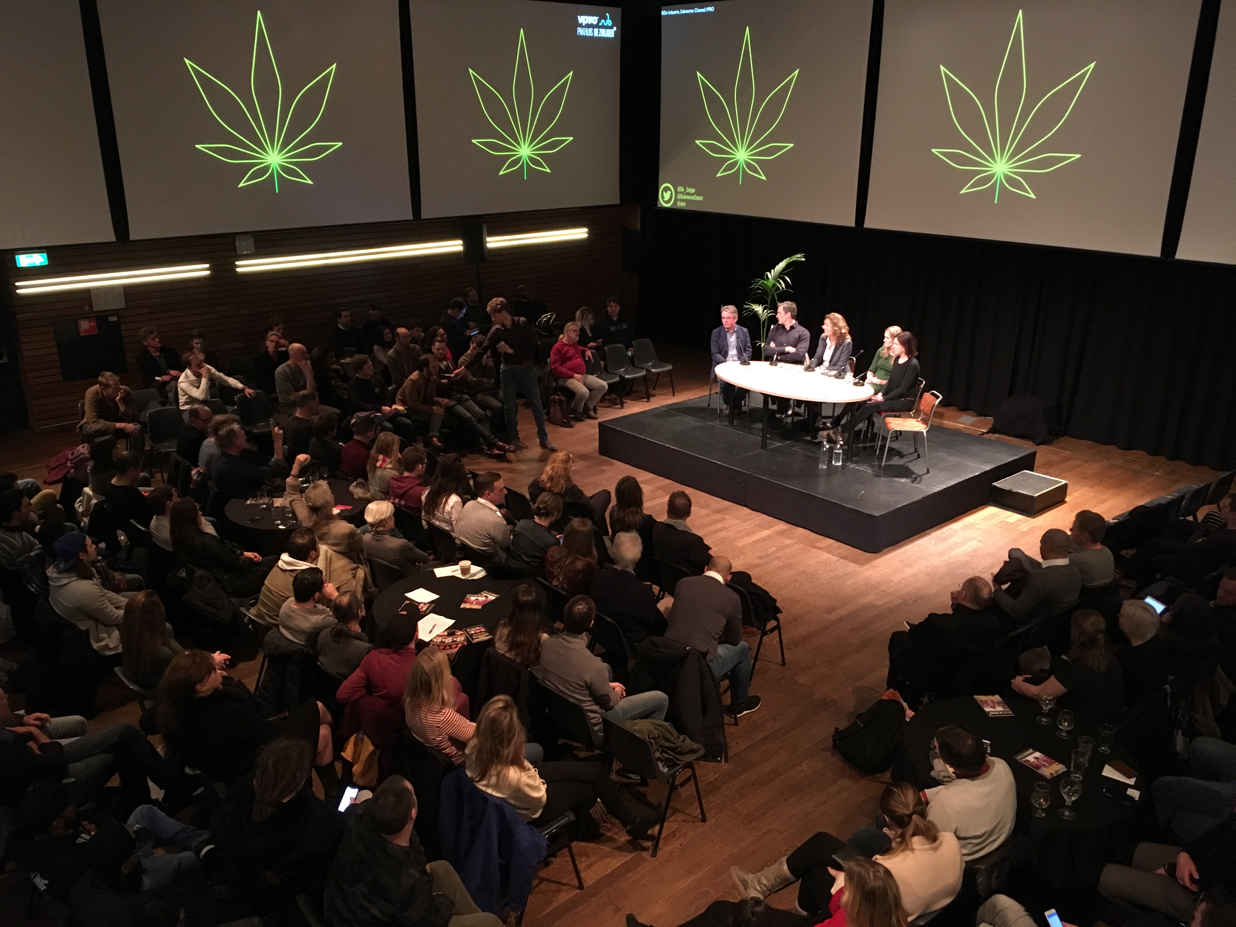 The Dutch Weed experiment